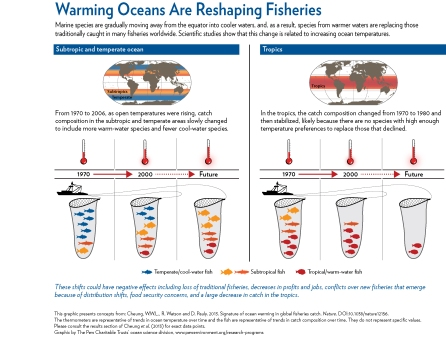 Fish migration patterns climate change