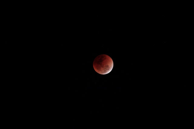 Super Blood Blue Moon
