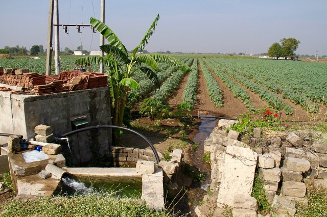 1200px-Ground_water_tubewell_irrigation_horticulture_Gujarat_India